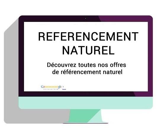Nos solutions référencement naturel SEO